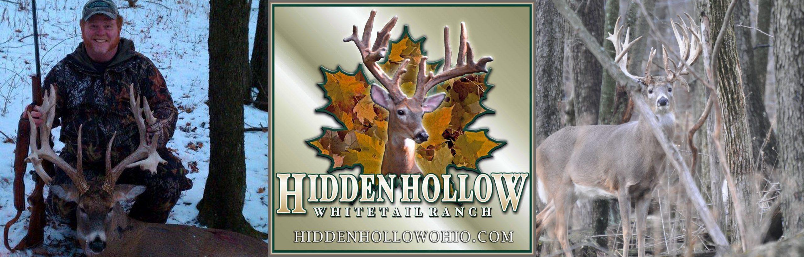 hidden hollow whitetail header